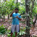 Testimoni Kelompok Coklat desa Wisolo