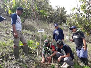 Ribuan Bibit Durian dan Bambu Ditanam di Lima Desa di Sigi