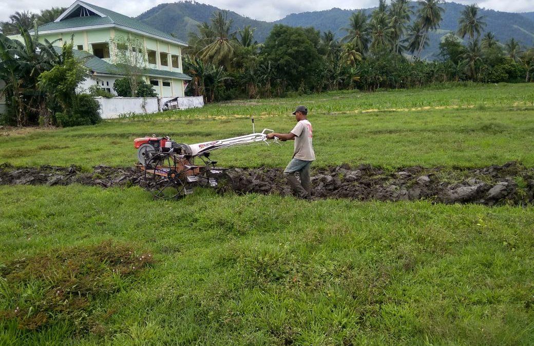 Pengerjaan Lahan Warga Penerima Manfaat Program Pemulihan Mata Pencaharian