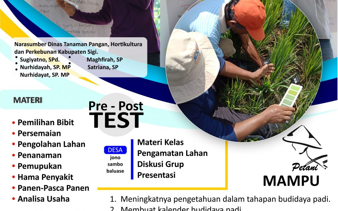 CULTIVATION TRAINING KELOMPOK PADI