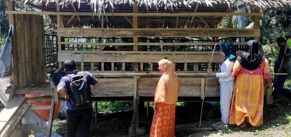 Sanitasi Kandang Kelompok Ternak Desa Baluase